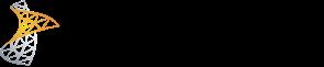 Lync-Server-Logo-2010-Horizontal-Transparent