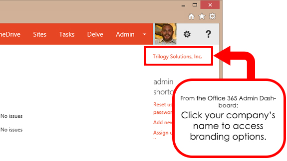 Office 365 Theme Options From Admin Panel